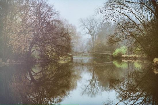 Karis_Smith-Fog_at_Bridge